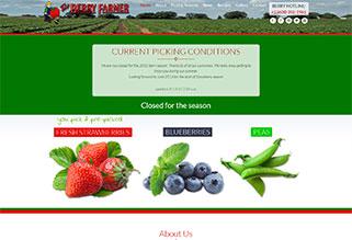 Berry Farmer